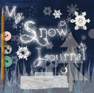 snow journal